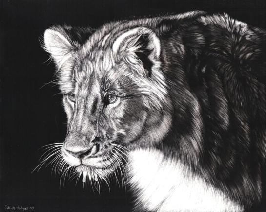 Lion finished (Medium)