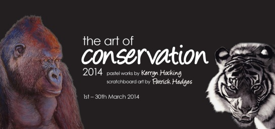 The Art Of Conservation DL 01