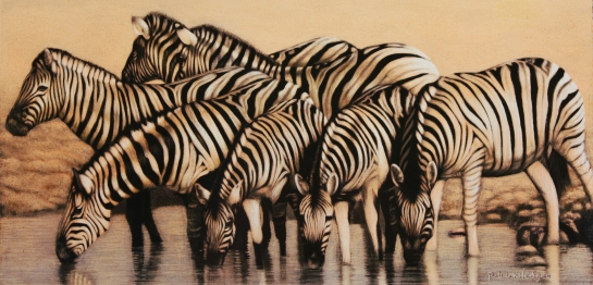 Zebras, Our world is closing in