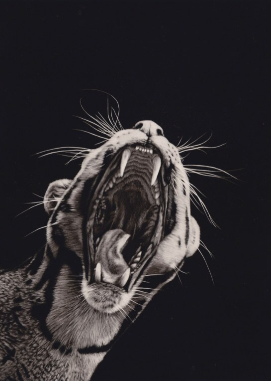 Clouded leopard diptych 01_855x1200