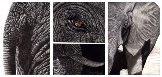 Elephant triptych_1600x762